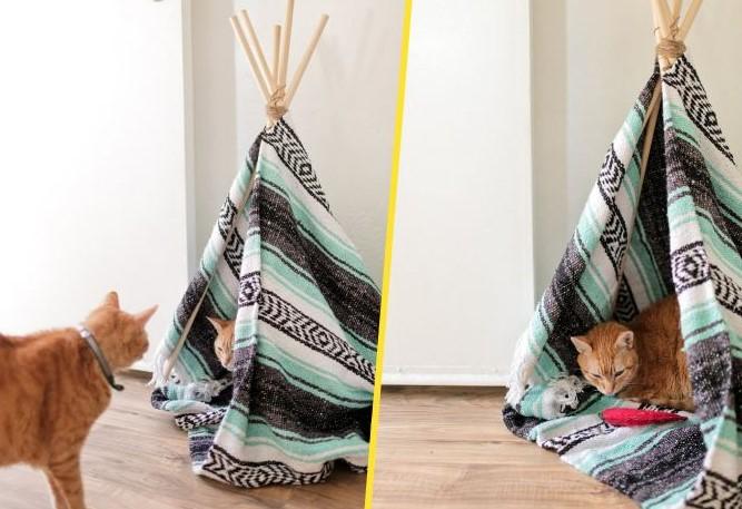 Варианты домиков для кошек, которые можно сделать самостоятельно